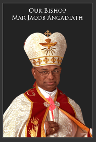 Banner-Bishop